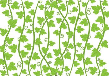 Ivy Vine Vector - vector #317531 gratis