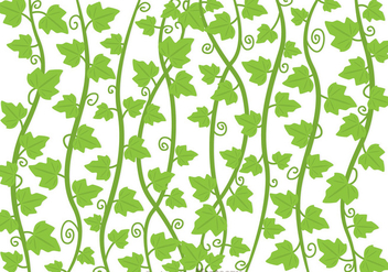 Ivy Vine Vector - Free vector #317531