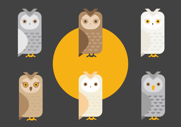 FREE BARN OWL VECTOR - vector #317691 gratis