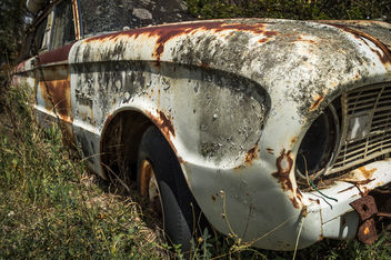 White Rust - image #320151 gratis