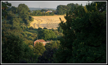 Harvest time - image gratuit #321291