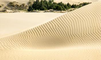 Sand dune pattern.jpg - image #321571 gratis