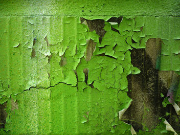 green wall- free texture - Free image #321781