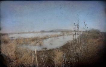 A New Year at Whitewater Draw, SE Arizona, USA - Free image #322781