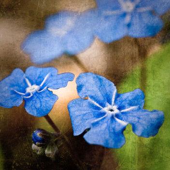So blue - Kostenloses image #322841