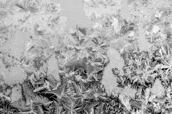 Frost Texture - Free image #323981