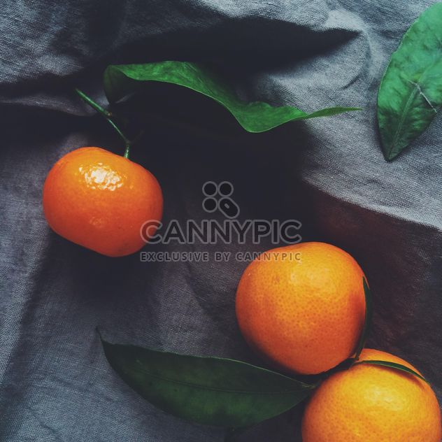 tangerines and green leaves on a blue background - image gratuit #329211