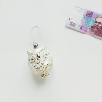 owl toy and money on a white background - image gratuit #329241