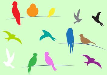 Colorful Birds in Vector - Free vector #329371