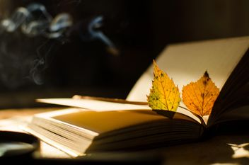 Autumn yellow leaves through a magnifying glass with incense sticks and book - image gratuit #330411