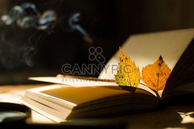 Folhas de outono amarelo através de uma lupa com incensos e livro - Free image #330411