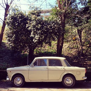Old Fiat 1100 D car - Free image #332241