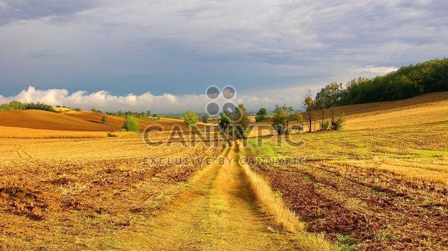 View on Monferrato village in Piemonte - Kostenloses image #334761