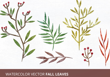 Watercolor Vector Leaves - vector gratuit #335451