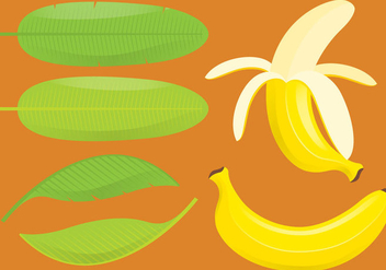 Bananas And Leafs - Free vector #335771