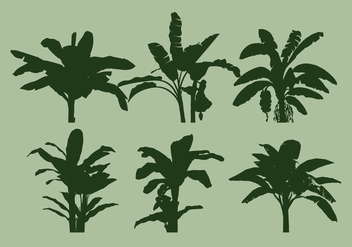 Banana Tree Vector - vector gratuit #337731