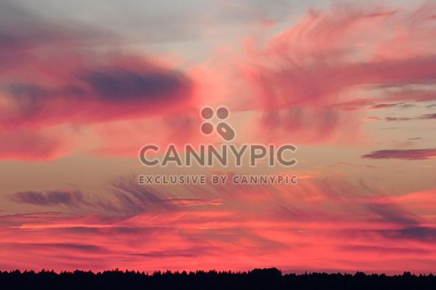 Pink sky at sunset - Free image #338521