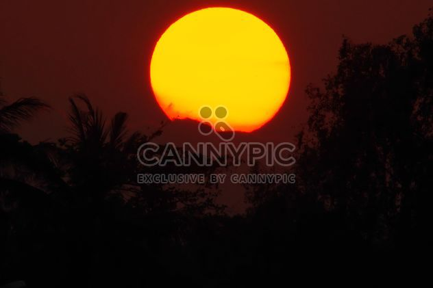 Big sun at sunset - Free image #338581