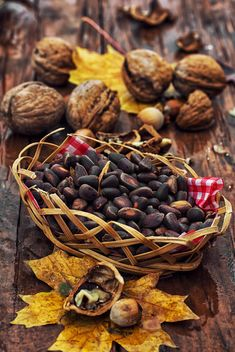nuts, seeds and maple leaf on a wooden table - image #342891 gratis