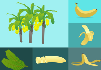 Banana Elements Illustration - vector gratuit #343461