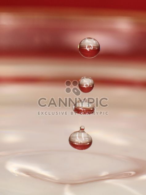 Background of water drops closeup - Free image #344631