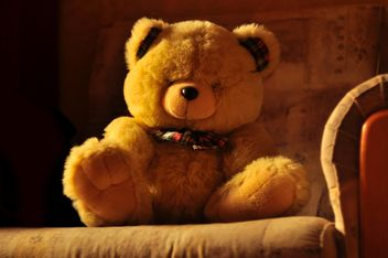Cute teddy bear on sofa - бесплатный image #345051