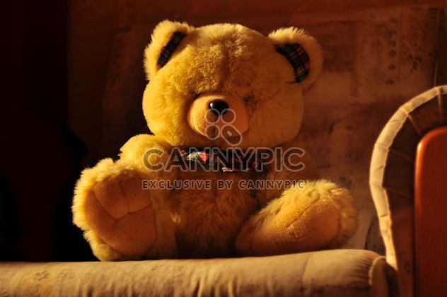 Lindo oso de peluche en sofá - image #345051 gratis