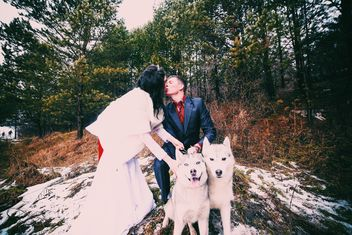 Happy kissing couple and husky dogs - бесплатный image #345881