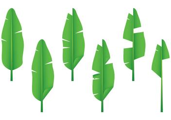 Realistic Banana Leaf Vectors - Free vector #346301