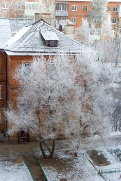 View on houses and trees in winter - бесплатный image #347001
