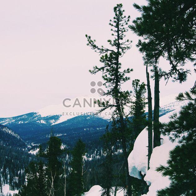 Paisaje de invierno con montañas de nieve - image #347011 gratis