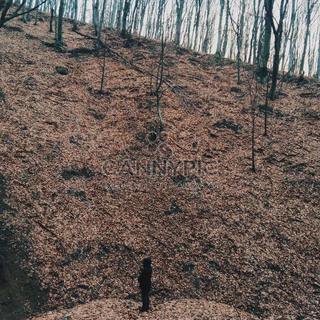 Man standing on hill in autumn forest - Free image #347261