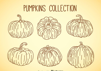 Pumpkin Collection - vector gratuit #347361