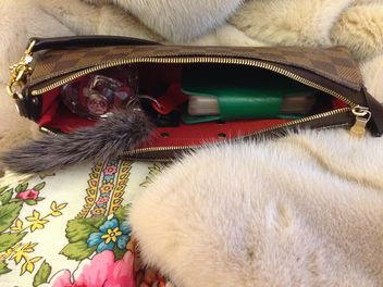 Open small handbag and fur - бесплатный image #348021