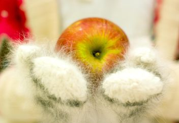 Red apple in downy mittens - бесплатный image #348041