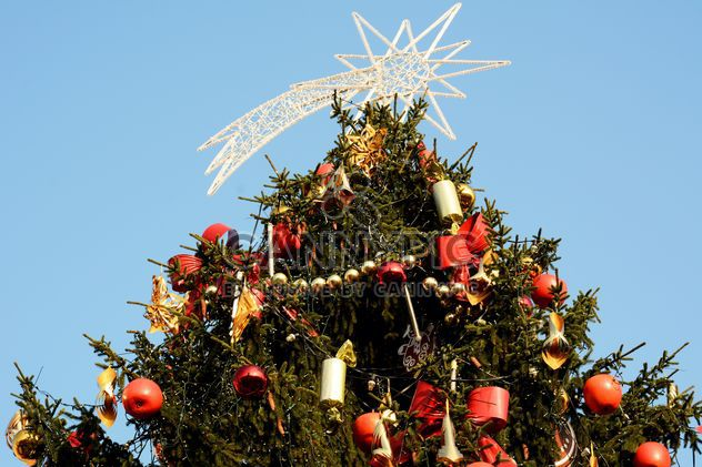 Decorated Christmas tree against blue sky - image gratuit #348431
