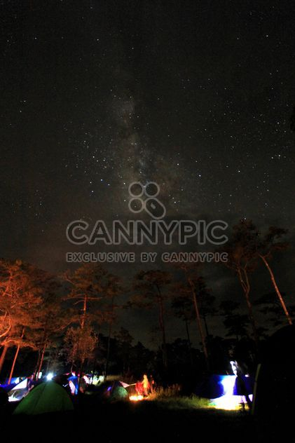 Night sky with Milky Way over tents in forest - Free image #348941