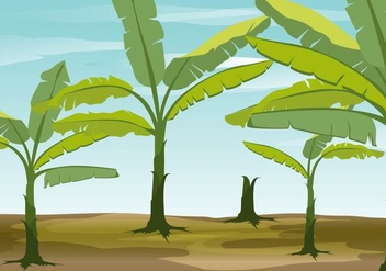 Banana Tree Vector Background - бесплатный vector #350091