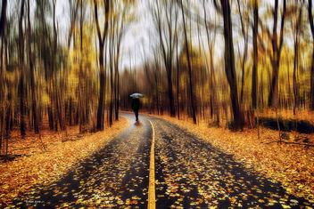 nice walk - image gratuit #351191