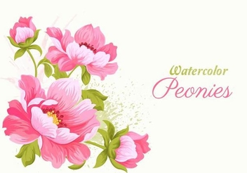 Watercolor Pink Peonies Card - vector gratuit(e) #351441
