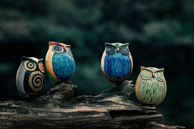 Owl Brothers - image #356671 gratis