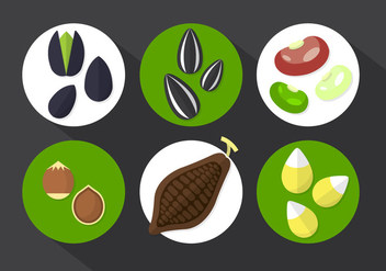 Cocoa Beans Vector Illustration - vector gratuit #361181