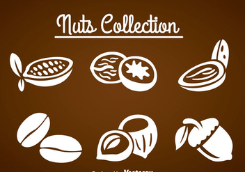 Nuts Collection Sets - Free vector #361241