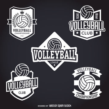 Set of volley stickers - Kostenloses vector #363441