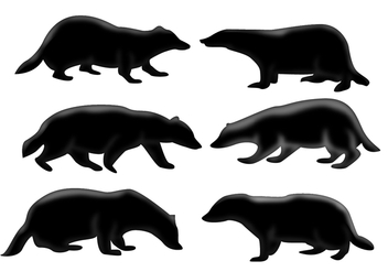 Honey Badger Silhouette - vector gratuit #364711