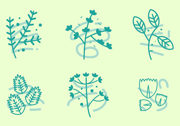 Free Thyme Vector Graphic 1 - vector #365821 gratis
