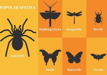 Insect Vector Silhouettes - Free vector #366461