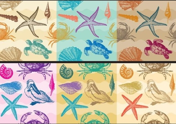 Beach Patterns - vector gratuit #373361