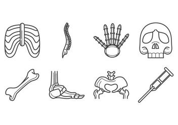 Free Human Bone Icon Vector - Kostenloses vector #380121