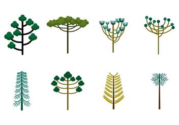 Free Araucaria Trees Vector - Free vector #381231